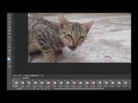 how to create gif animation in photoshop cs6