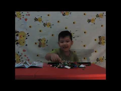 Unboxing Lego 40263