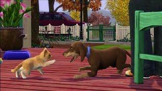 Sims 3 pets: cheats - ps3