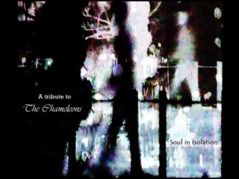 A Tribute To The Chameleons: Soul In Isolation