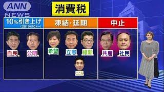 衆院選の争点「消費税」 各党の主張のポイントは(17/10/16)