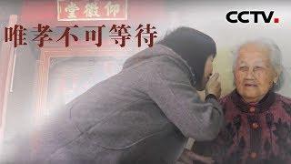 [中华优秀传统文化]唯孝不可等待| CCTV中文国际