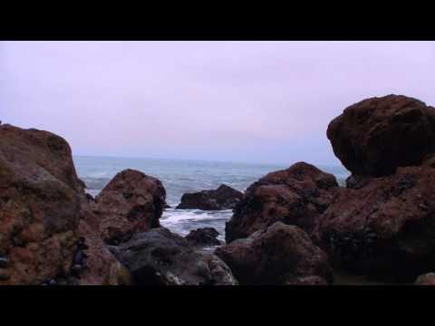 1 HOUR SEASIDE SOUNDSCAPE - HI-RES Recording - For MEDITATION, YOGA, RELAXATION, SLEEP
