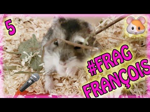 François live ❤ Q&A Teil 5 #FragFrançois