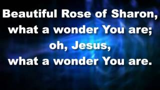 jesus what a wonder you are lyrics juanita bynum