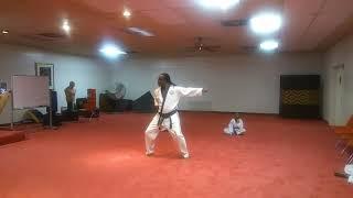 Martial arts form
