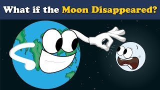 What if the Moon Disappeared? | #aumsum