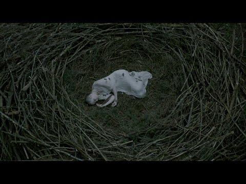 Shaman Jungle - Nagavor (Official Music Video)