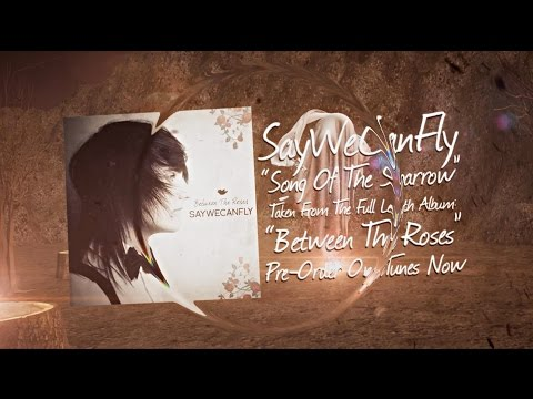 """Song of The Sparrow"" (Official Lyric Video) - SayWeCanFly"