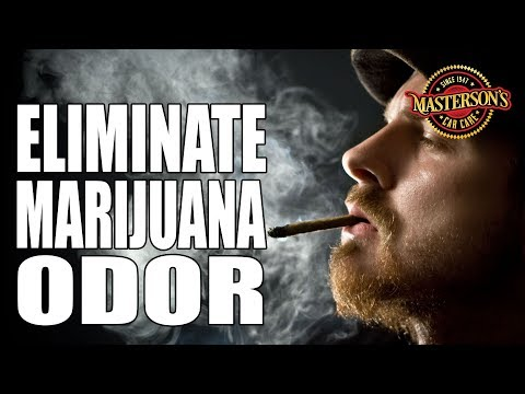 How To Remove Weed Smells From Your Car - Masterson's Car Care