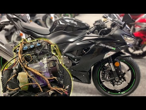 DIY Gold Wiring Harness - Am I Buying The 2019 Zx6r?