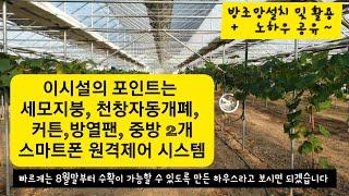 스마트한 샤인머스켓 미니연동하우스 시설 & 월동…