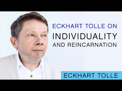 On Individuality & Reincarnation