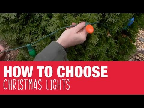 how to choose christmas lights ace hardware
