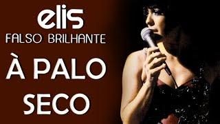 Baixar Elis Regina em: Poema à Palo Seco (DVD Falso Brilhante)