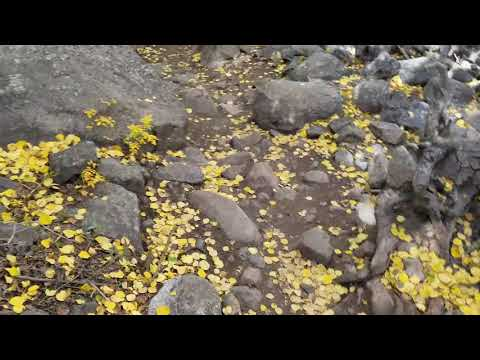 Cub Lake Trail- Rocky Mountain National Park