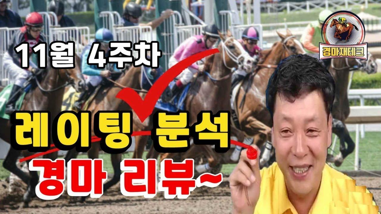 11월4주차 레이팅분석 예상 경마 리뷰!!!
