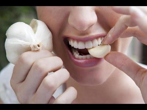 Едим чеснок  Полезные свойства чеснока