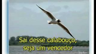 Elias Silva - Livre para Voar (karaoke)