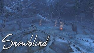 Guild Wars 2 Snowblind Fractal Guide 2018 In Depth & Comprehensive