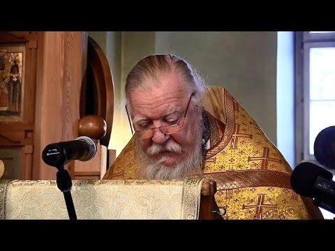 Проповедь на неделю 24-ю по Пятидесятнице (о гадаринском бесноватом)