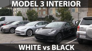 Model 3 white vs black interior, Performance vs standard