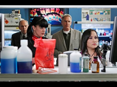 NCIS  Carol flirts with Fornell S9Ep7 Devil's Triangle