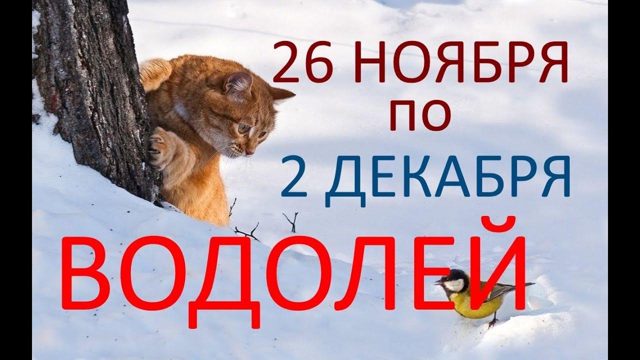 ВОДОЛЕЙ. ТАРО-ПРОГНОЗ. НЕДЕЛЯ с 26.11 по 02.12.2018г.