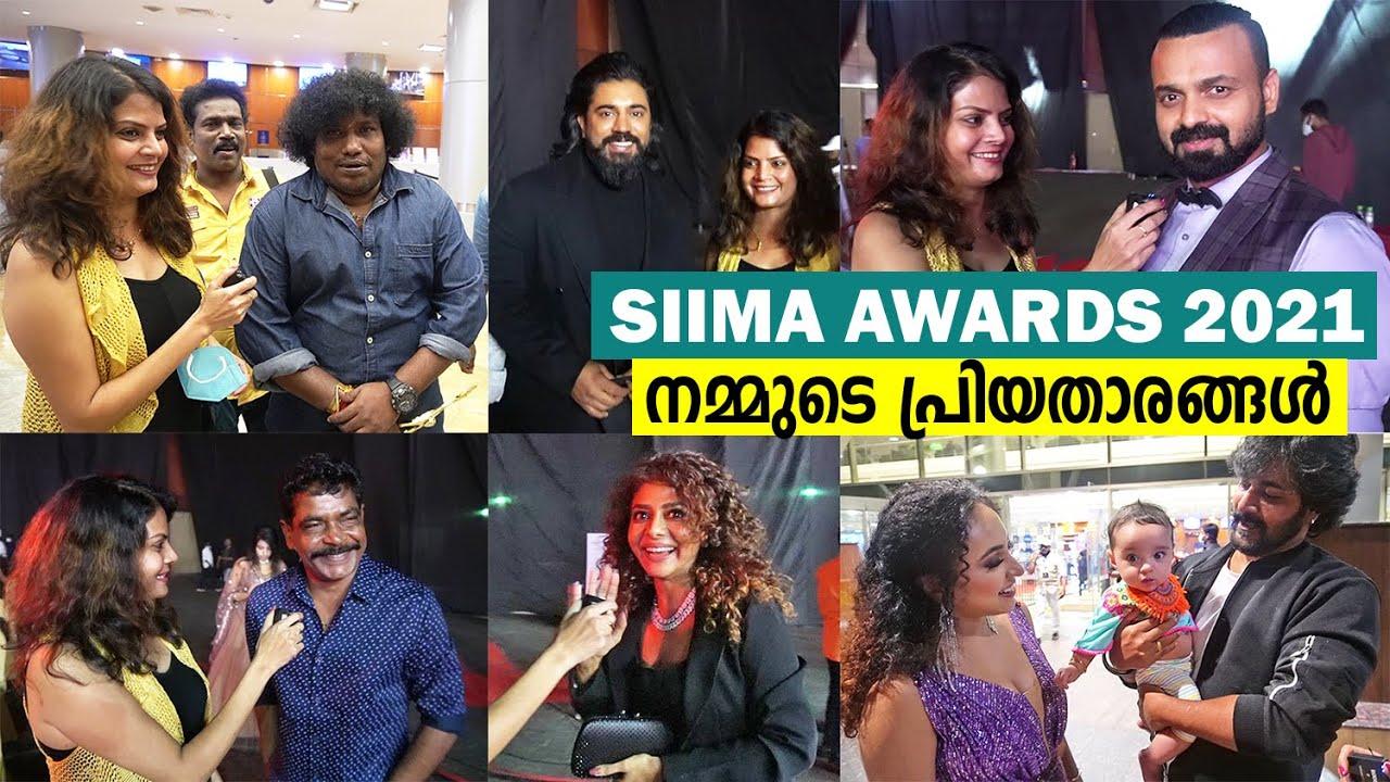 Download 'SIIMA AWARDS' വേദിയിൽ വെച്ച് സെലിബ്രിറ്റി താരങ്ങളെ പരിചയപ്പെട്ടപ്പോൾ | SIIMA AWARDS Event 2021