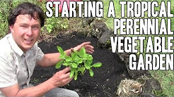 Starting a Tropical Perennial Vegetable Garden in Hawaii