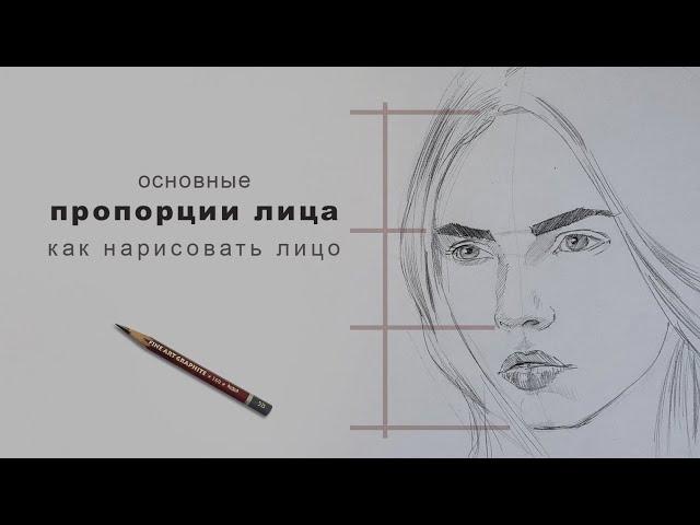 пропорции лица как нарисовать лицо пропорции лица в рисунке