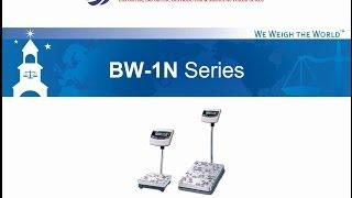 CAS Indicator Water Proof BW-1N Series - Timbangan Digital