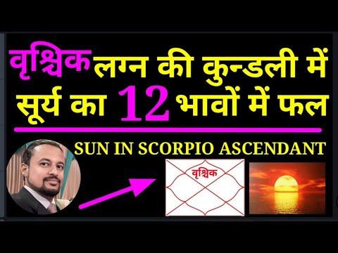 Results Of Planet #Sun In All 12 Houses In #Scorpio Lagna | #वृश्चिक लग्न में #सूर्य का फल | Amman