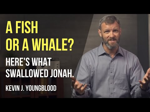 A Fish Or A Whale? Here's What Swallowed Jonah.