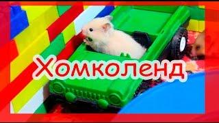 Хомяки в диснейленде )