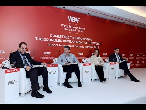 WBAF 2018 Panel: Regional focus -  Impact investment in South East Europe