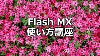 "Macromedia Adobe Flash MXの使い方 ""アニメーションの基本"""