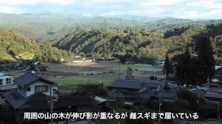 不思議な物語 「立石の夫婦杉」 (飯田市立石) WEB こんにちは伊那谷