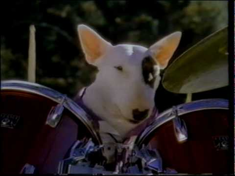 Spuds MacKenzie - Bud Light Commercial - 1987