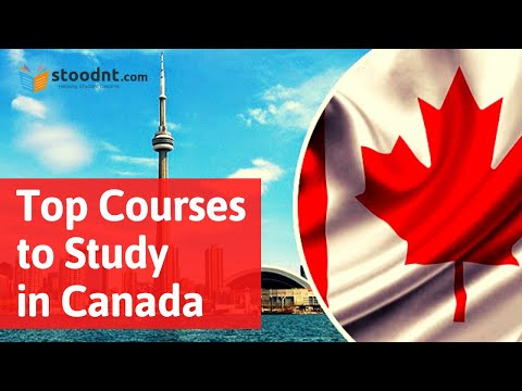 Top Pg Diploma Courses Best Spp Colleges In Canada