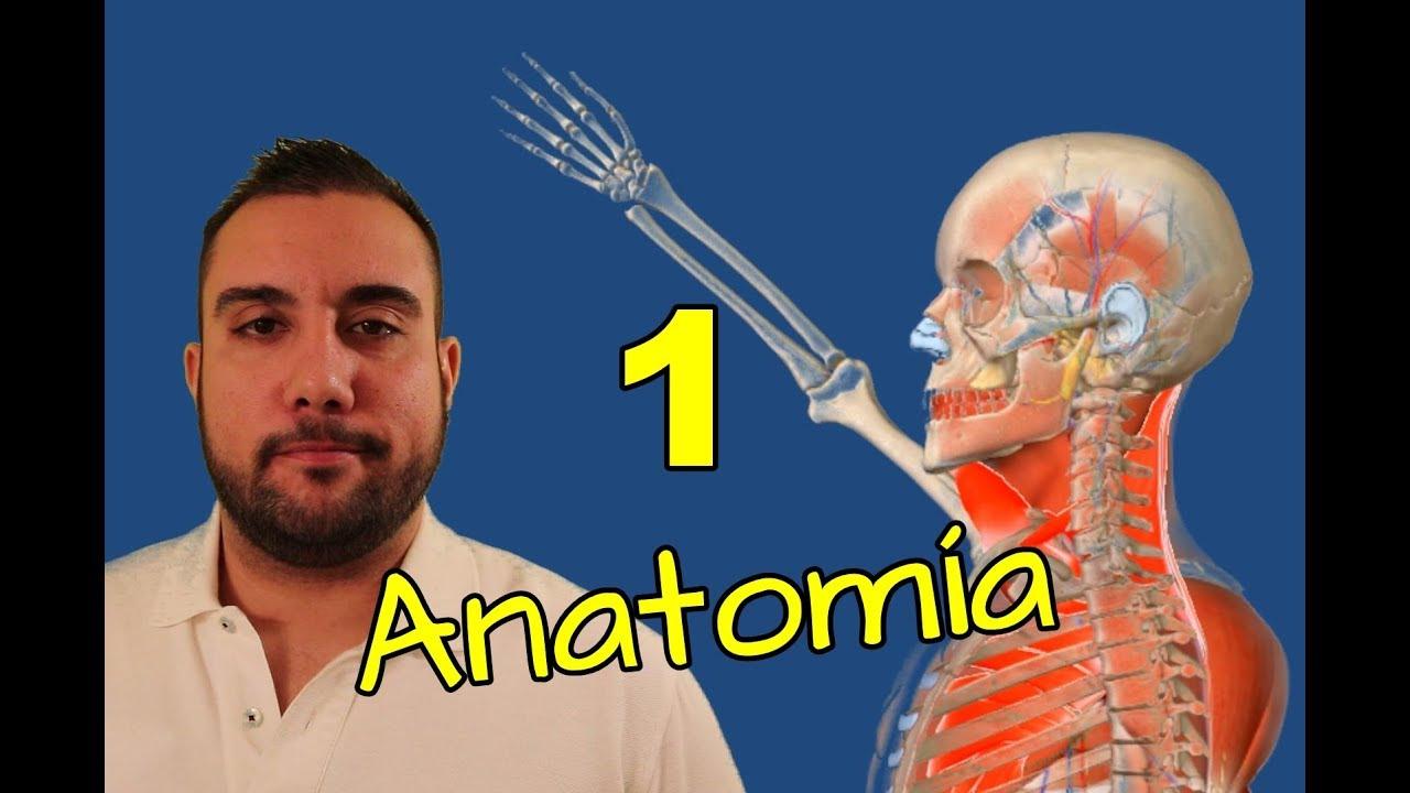 ANATOMÍA BÁSICA Capítulo 1 - INTRODUCCIÓN - YouTube