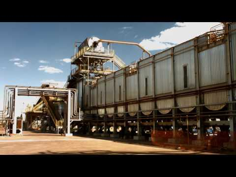 BP biofuels - what we do and how we do it