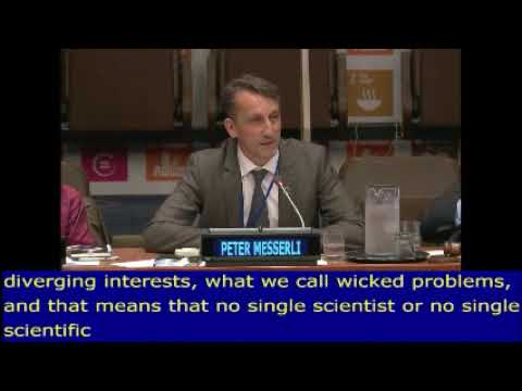 CDE's director Peter Messerli at the United Nations