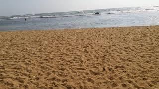 Moragalla beach in Sri Lanka
