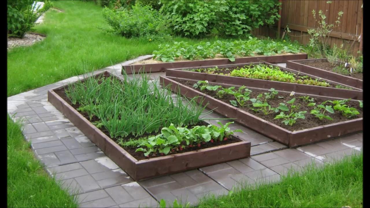 ухоженные огороды на даче