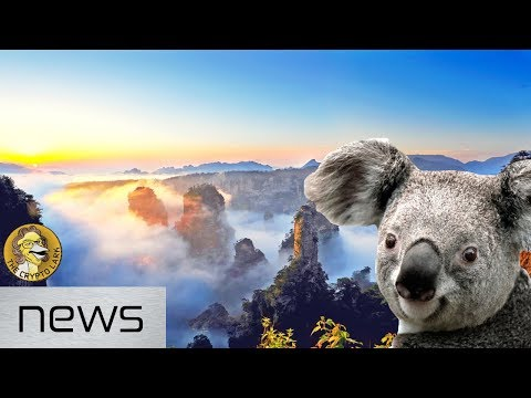 Bitcoin & Cryptocurrency News - Asia Going Crypto Crazy, & Australia Ready for Crypto Tourists