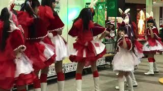 White Rabbits クリスマスライブ イオン松江にて 「White Rabbits」ファンクラブページ http://whiterabbits2016.jimdo.com.