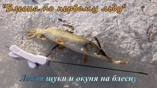 Открыл зимний сезон 2017 Рыбалка супер Перволёдье . Ловля щуки по первому льду