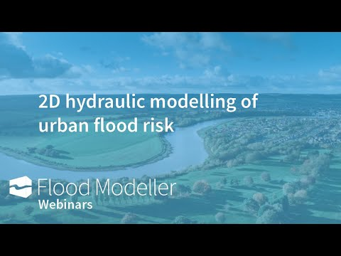 2D Modeling of Urban Flood Risk
