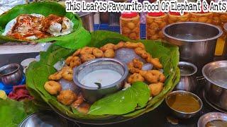 Magic Chaat | Jain Chaat Bhandar Haridwar | Dahi Bhalle & Papdi | Best Kaanji Vada | जैन चाट भंडार